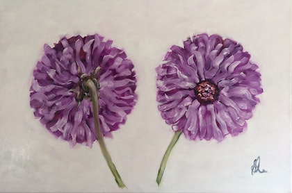 Chrysanthemum study, front and back