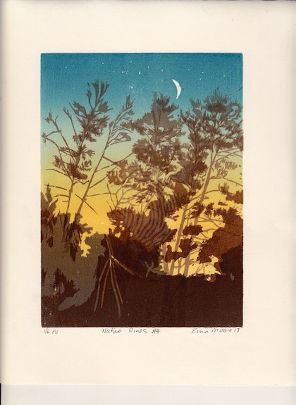 Native pines #4 Ed. 3 of 6