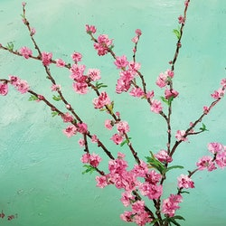 Spring blossoms donna gibb bluethumb art c533