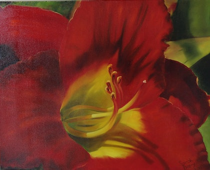 Red Day Lily - Flower's Series 1