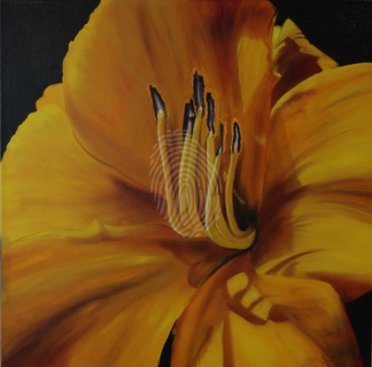 Daylily - Mary's Gold - Flowers Series I