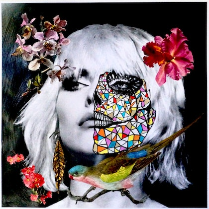 Debbie Harry with Spirit Bird: Rose Throated Parrot & Botanicals: Orchids & Hibiscus