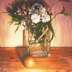 Flower study peter tankey bluethumb art bd8e