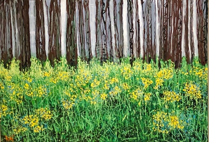 Woodland and Wildflowers