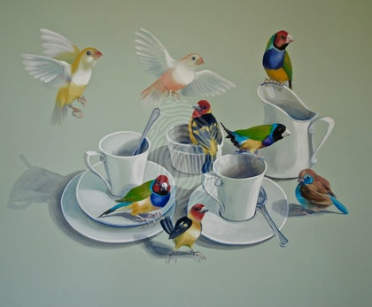 Tea With The Gouldians