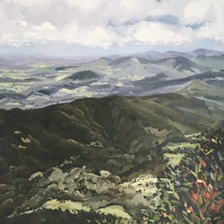 Springbrook lookout the best view of all meredith howse bluethumb art 8ea3