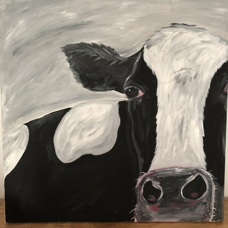 Holly the Hussy  Holstein cow !