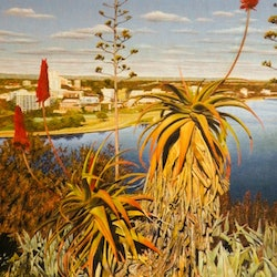 South perth from kings park colin madgwick bluethumb art 954a