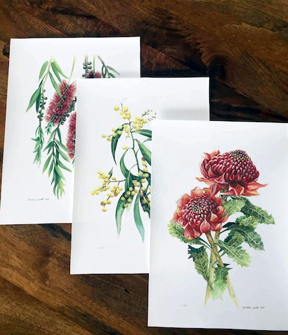 Australian Native Flowers (Set of 3) - Limited edition prints  Ed. 51 of 100
