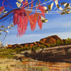 Blossoms in the kimberley robin tunnicliffe bluethumb art 0401