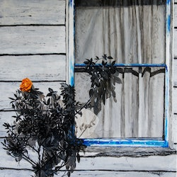 Boo radley s window rodney black bluethumb art 3d58