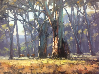 High Country Gums