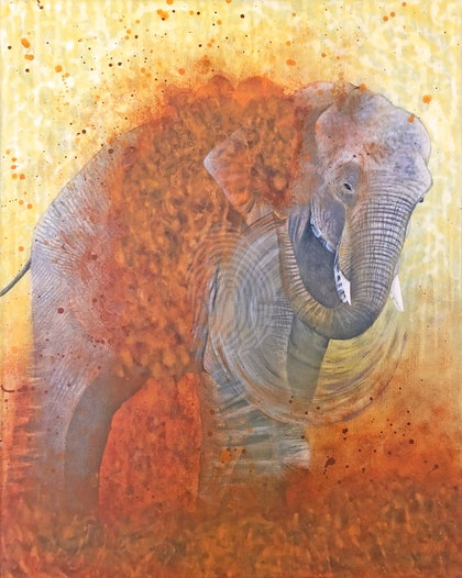 Elephant Play with Movement