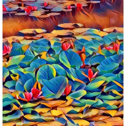 Water Lilies Ed. 1 of 100