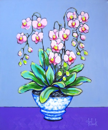 Pink Orchids in Blue-White Pot
