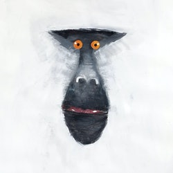 Mandrill monkey series john graham bluethumb art 928d