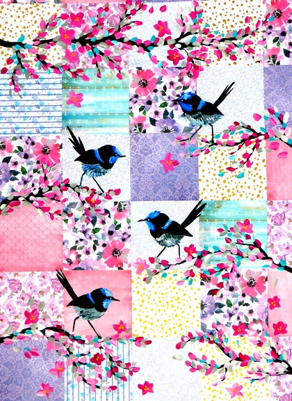 Patchwork Wrens