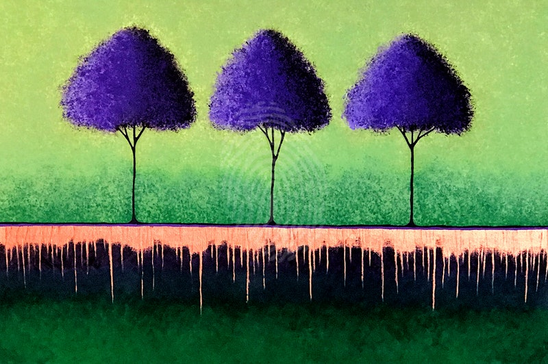 Three Jacaranda Trees