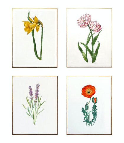 Botanical Tetraptych [4 paintings]
