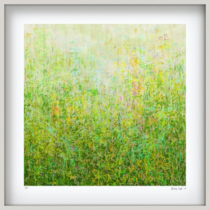 'Summer Garden' in white box frame   Ed. 7 of 75