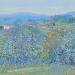 Olive groves tuscany jan matson bluethumb art 58b1