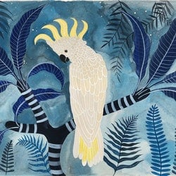 Sulphur crested cockatoo in the night garden sally browne bluethumb art 2a96