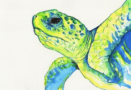 Sea Turtle Study in Inks 13 April 2018