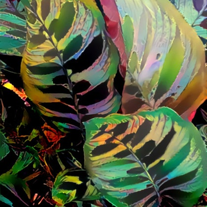 Jungle Leaves Abstract