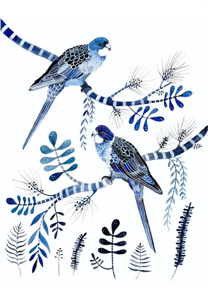 Indigo Rosellas and Native Flora Ed. 8 of 50