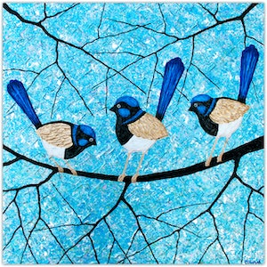 Blue wrens fairy wrens miranda lloyd bluethumb art f5ec