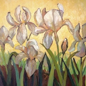 White irises ray saunderson bluethumb art 532b