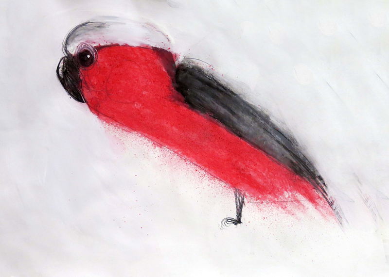 (CreativeWork) Galah  by John Graham. mixed-media. Shop online at Bluethumb.