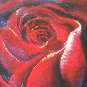 (CreativeWork) Red Rose Deep by Jeanne Cotter. print. Shop online at Bluethumb.