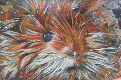 (CreativeWork) BAD HAIR DAY - animal portrait by Nicky (Nibs) Courtman. Acrylic Paint. Shop online at Bluethumb.