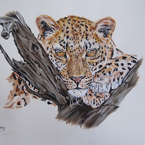 (CreativeWork) leopards rest by Hiten Mistry. arcylic-painting. Shop online at Bluethumb.