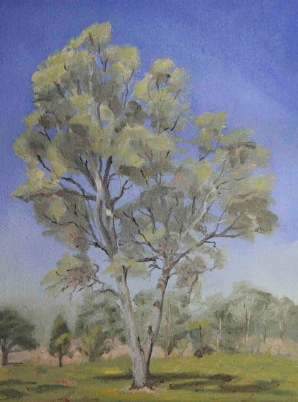 (CreativeWork) Tree by Julie Cane. oil-painting. Shop online at Bluethumb.