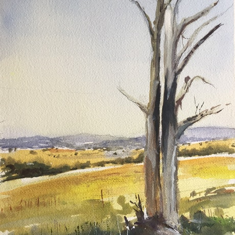 (CreativeWork) High Country , Central Victoria  by Geoff Stanistreet. Watercolour Paint. Shop online at Bluethumb.