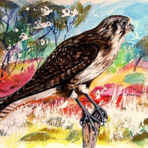 (CreativeWork) Falcon with locust swarm by Raymond Wittenberg. arcylic-painting. Shop online at Bluethumb.