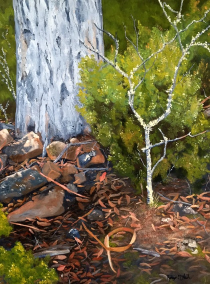 (CreativeWork) Bushland Lichen, Central Highlands, Tasmania by Robyn McNeil. oil-painting. Shop online at Bluethumb.