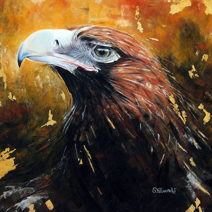 (CreativeWork) 'Wedge-Tail Eagle' by SALLY EDMONDS. #<Filter:0x000055cbc17611b8>. Shop online at Bluethumb.