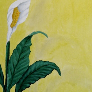 (CreativeWork) Peace Lily on Yellow by Julie-Anne Gatehouse. arcylic-painting. Shop online at Bluethumb.
