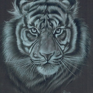 (CreativeWork) White on black tiger by Gemma Stylz. drawing. Shop online at Bluethumb.