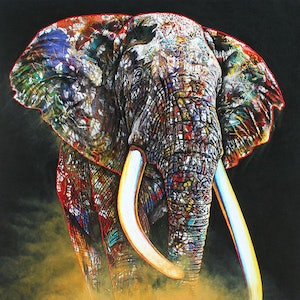 (CreativeWork) Rainbow Elephant Ed. 1 of 299 by Colour In Your Life. print. Shop online at Bluethumb.