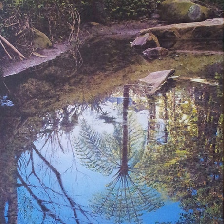 (CreativeWork) French forest, Sydney by francois olivier. Acrylic Paint. Shop online at Bluethumb.