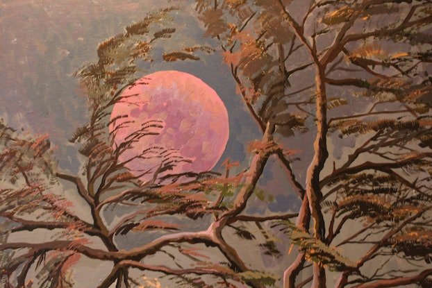 (CreativeWork) Moonlight by Ema mullalli. Oil Paint. Shop online at Bluethumb.