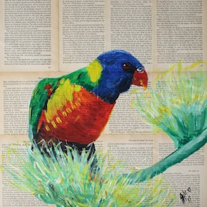 (CreativeWork) Lorikeet by Julie Hollis. arcylic-painting. Shop online at Bluethumb.