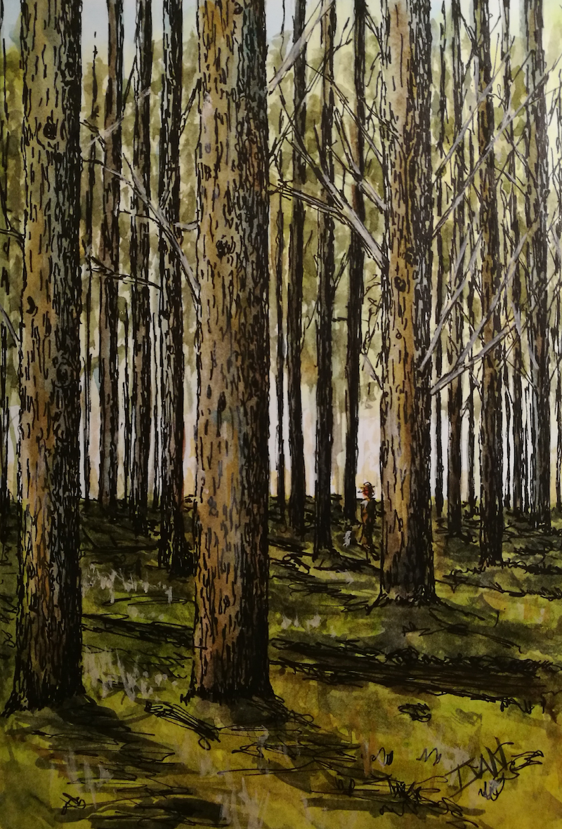 (CreativeWork) Pine forest by Ivan McClennan. Mixed Media. Shop online at Bluethumb.