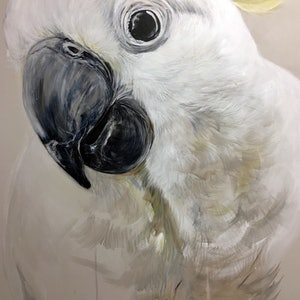(CreativeWork) BOO! the Cockatoo by Emma Ward. arcylic-painting. Shop online at Bluethumb.