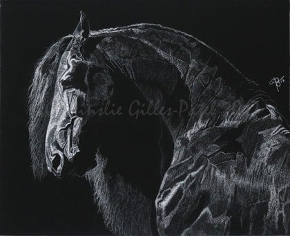 (CreativeWork) Pride & Power by Ainslie Gilles-Patel. drawing. Shop online at Bluethumb.
