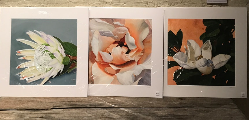 (CreativeWork) Steel Magnolia - limited edition giclee print on fine art cotton paper incl white matt by Hayley Kruger. Print. Shop online at Bluethumb.